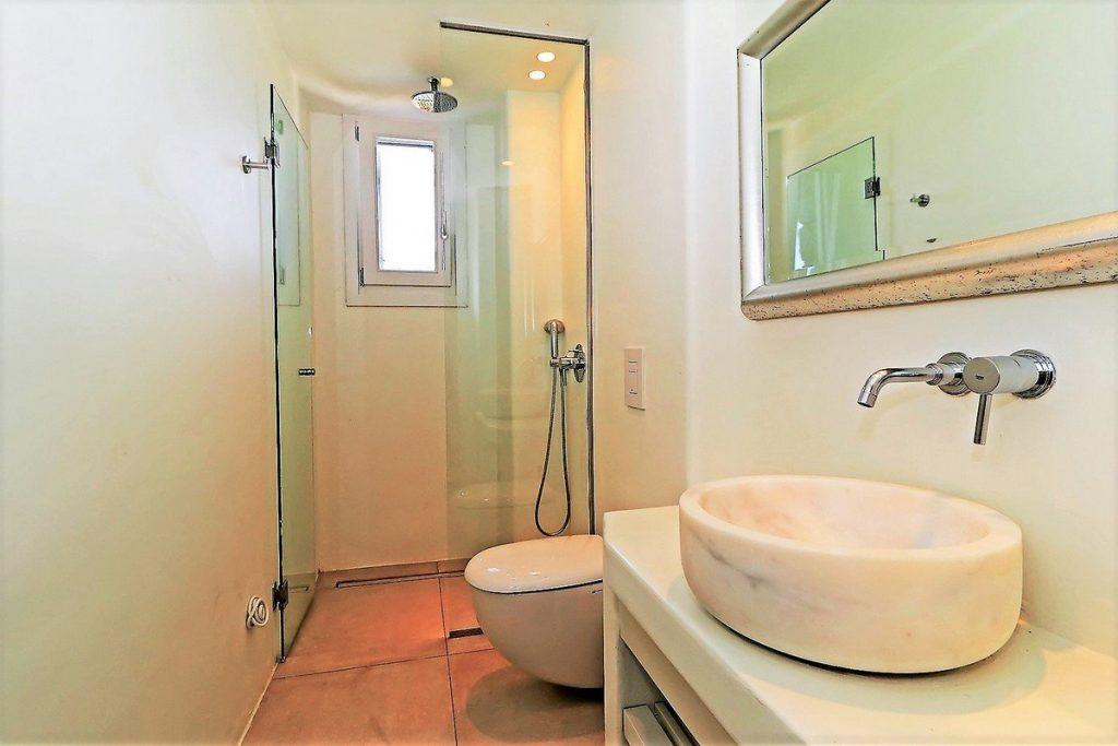 glass shower with daylight and sink