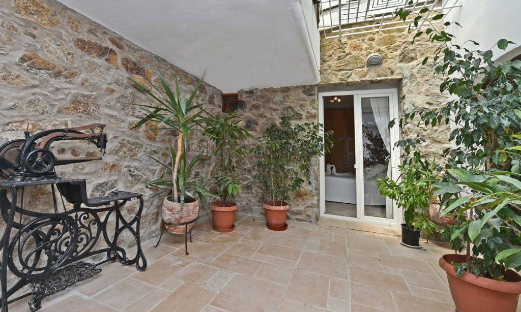 outdoor area with plants and an unusual device