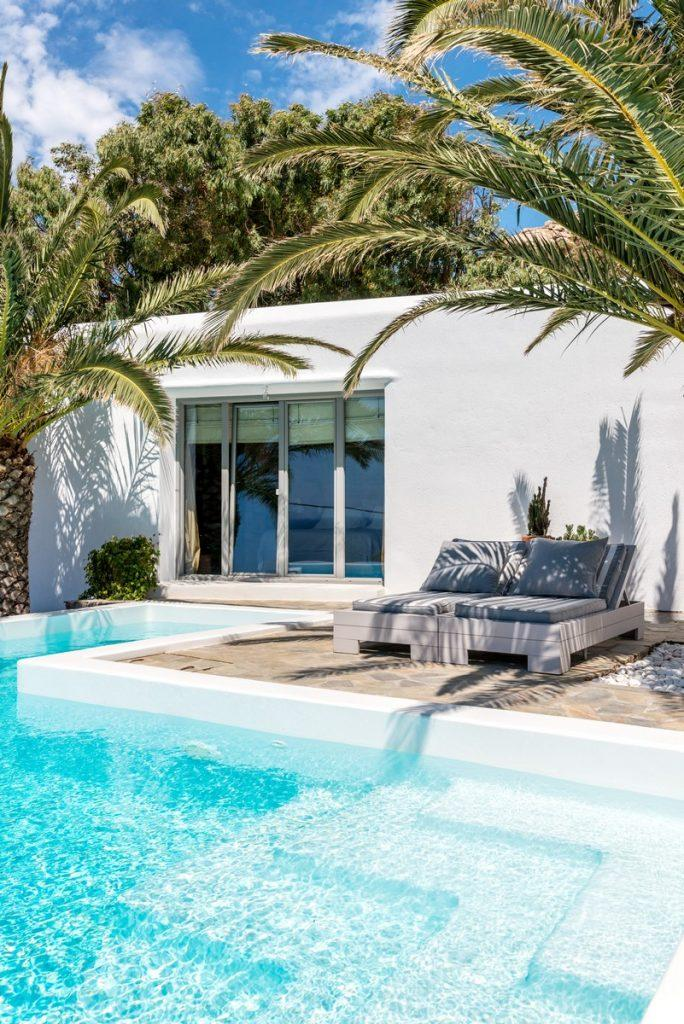 area with pool and palma for relaxing and sunbaths