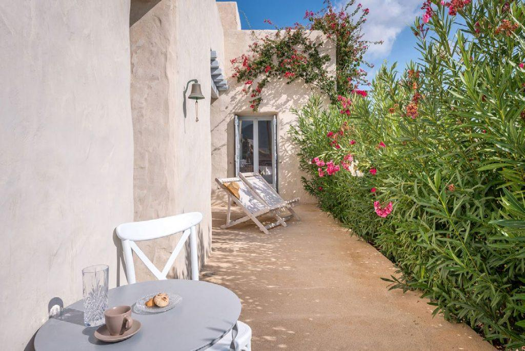 outside villa garden with olive tree flowers and other plants