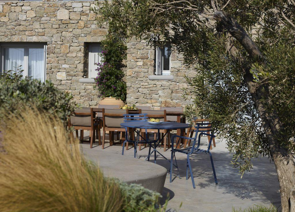 outside villa garden with olive tree and other plants ideal for chilling